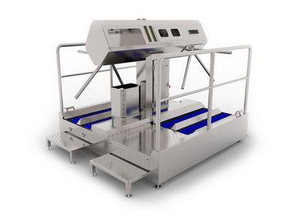 Оборудование для обработки кишок, кишечного сырья